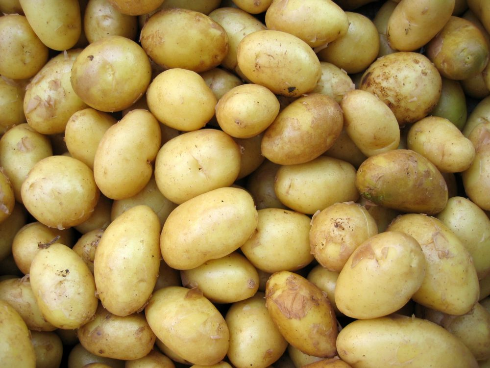 Can You Freeze Boiled Potatoes?